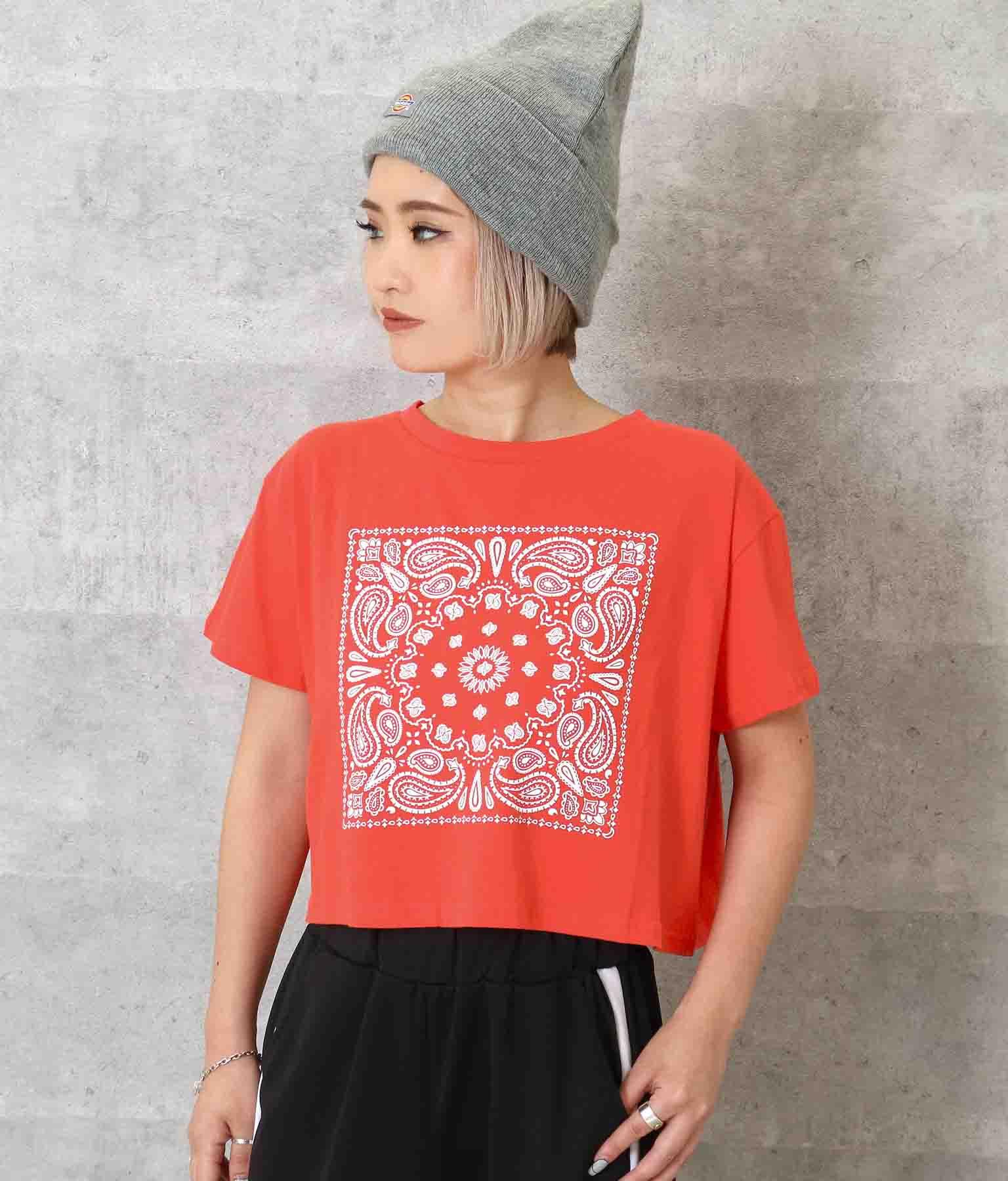 ペイズリークロップドTシャツ