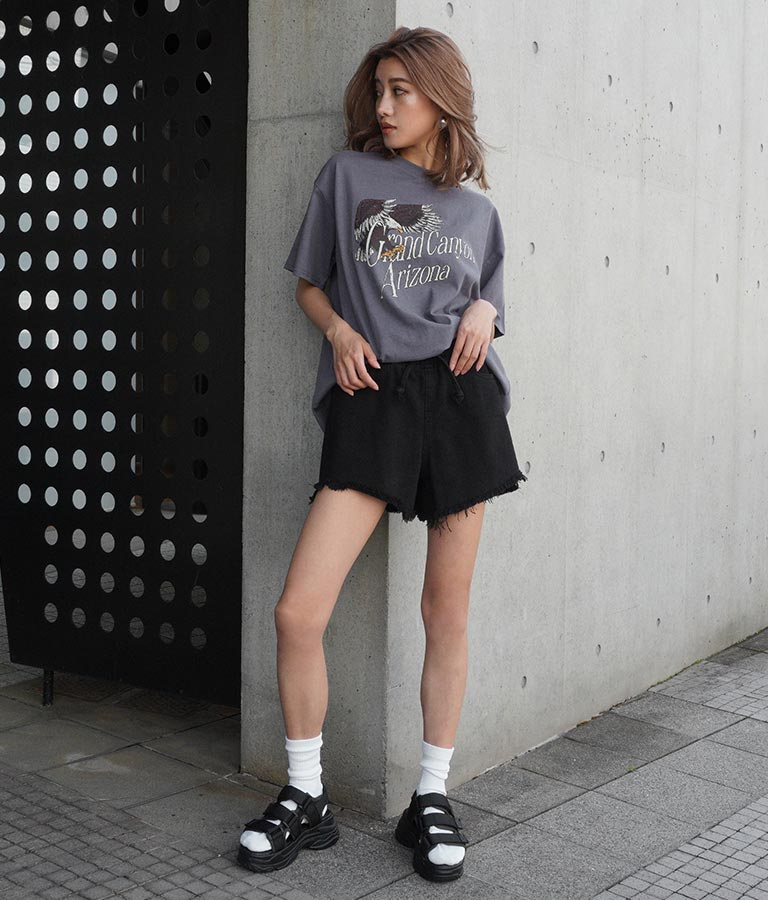 イーグルプリントTシャツ(トップス/Tシャツ) | ANAP