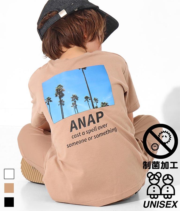 制菌ポケット付きパームツリービッグTシャツ
